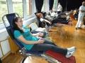 akcija-davanja-krvi-07